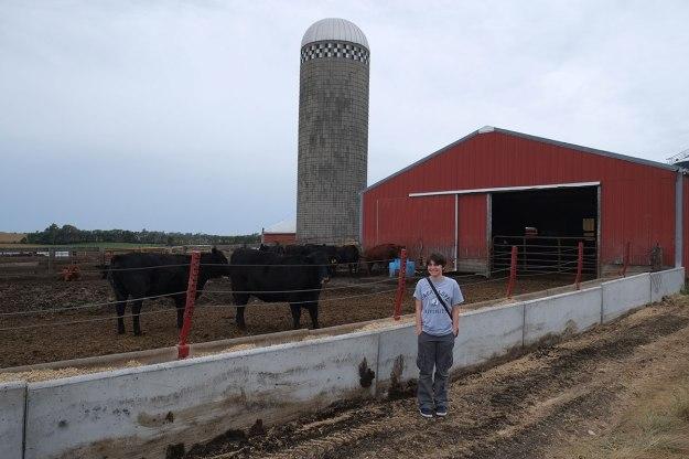 Greta discivers her bovine relations