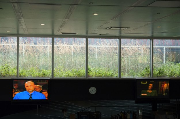 Koolhaas has set up the screens in the cafe that constantly play Judge Judy on a loop.
